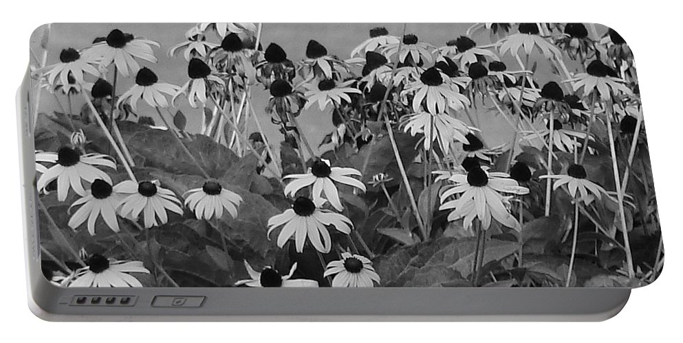 Portable Battery Charger featuring the photograph Black And White Susans by Luciana Seymour