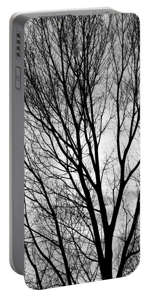 Silhouette Portable Battery Charger featuring the photograph Black And White Tree Branches Silhouette by James BO Insogna