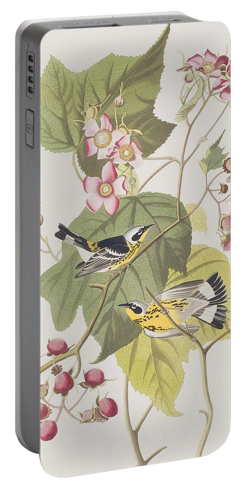 Warbler Portable Battery Charger featuring the painting Black And Yellow Warblers by John James Audubon