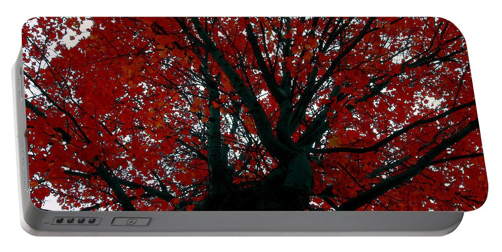 Red Tree Portable Battery Charger featuring the painting Black Bark Red Tree by David Lee Thompson