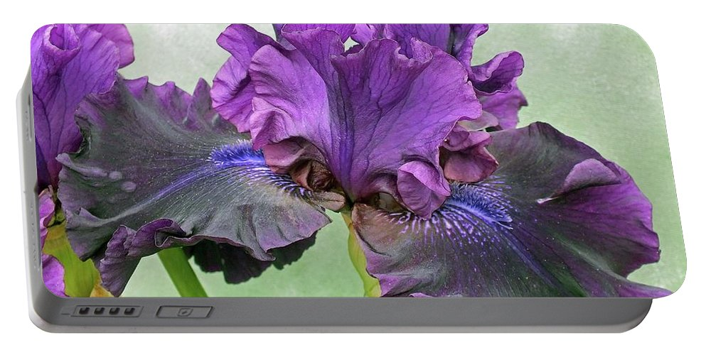 Bearded Iris Portable Battery Charger featuring the photograph Black Bearded Iris by Cindy Treger