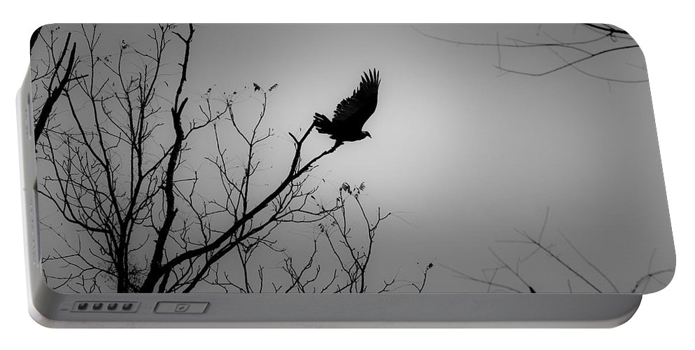 Black Portable Battery Charger featuring the photograph Black Buzzard 1 by Teresa Mucha