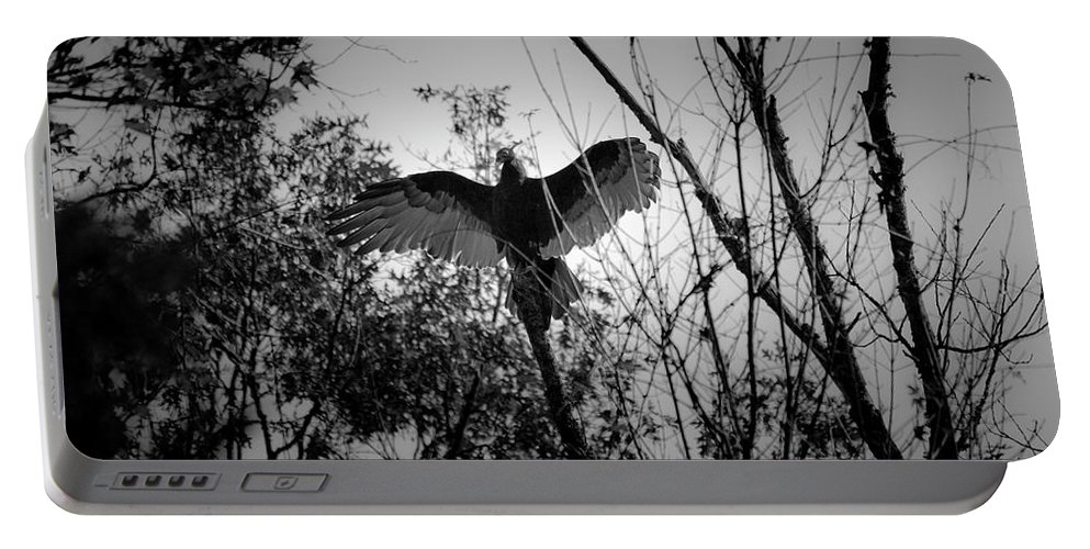 Black Portable Battery Charger featuring the photograph Black Buzzard 4 by Teresa Mucha