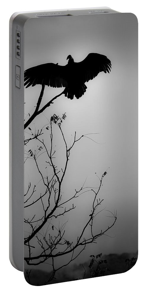 Black Portable Battery Charger featuring the photograph Black Buzzard 6 by Teresa Mucha