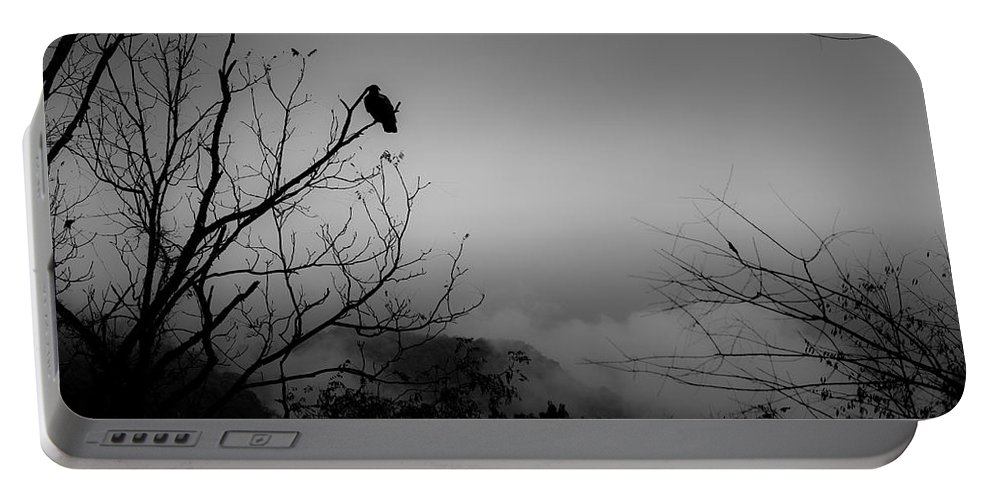 Black Portable Battery Charger featuring the photograph Black Buzzard 9 by Teresa Mucha