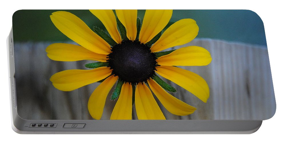 Flower Portable Battery Charger featuring the photograph Black Eye by Eric Liller