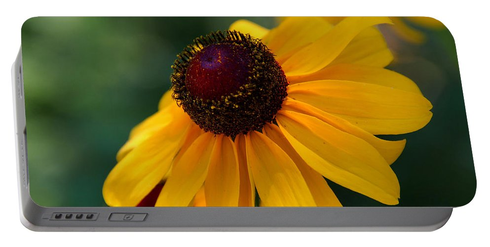 Photography Portable Battery Charger featuring the photograph Black Eye Susan by Susanne Van Hulst