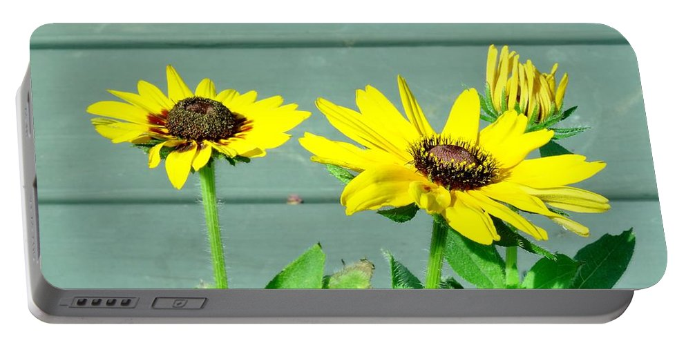 Black Portable Battery Charger featuring the photograph Black Eyed Susans Trio by Scenic Sights By Tara