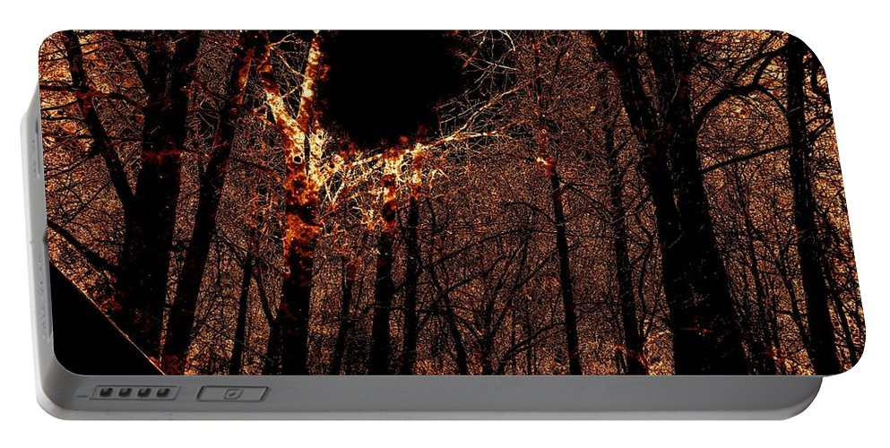 Fire Portable Battery Charger featuring the photograph Black Hole Sun by Charleen Treasures