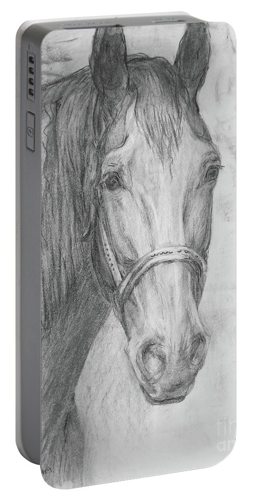 Horse Portable Battery Charger featuring the drawing Black Horse by Tatiana Berezina