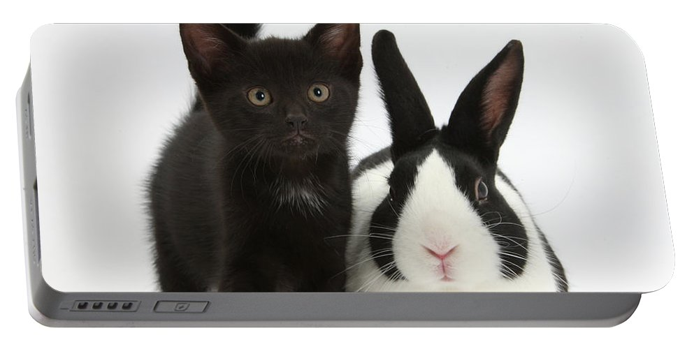 Nature Portable Battery Charger featuring the photograph Black Kitten And Dutch Rabbit by Mark Taylor