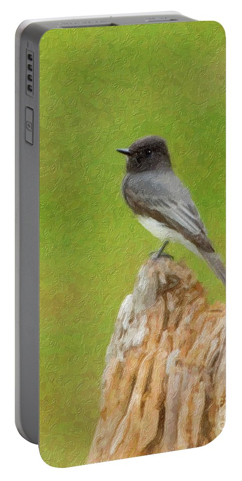 Black Phoebe Portable Battery Charger featuring the photograph Black Phoebe by Betty LaRue