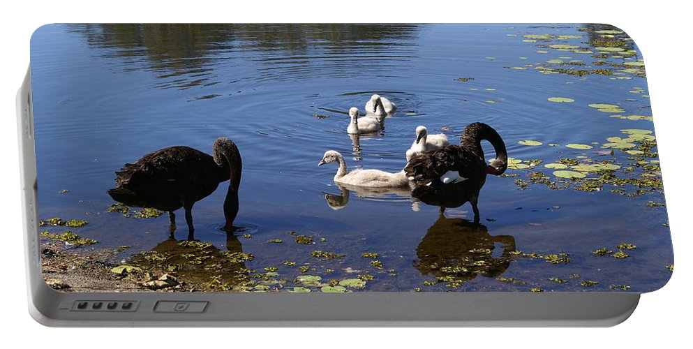 Bird Portable Battery Charger featuring the photograph Black Swan's by Brian Leverton