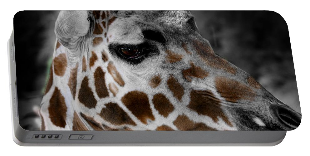 Giraffe Portable Battery Charger featuring the photograph Black White And Color Giraffe by Anthony Jones