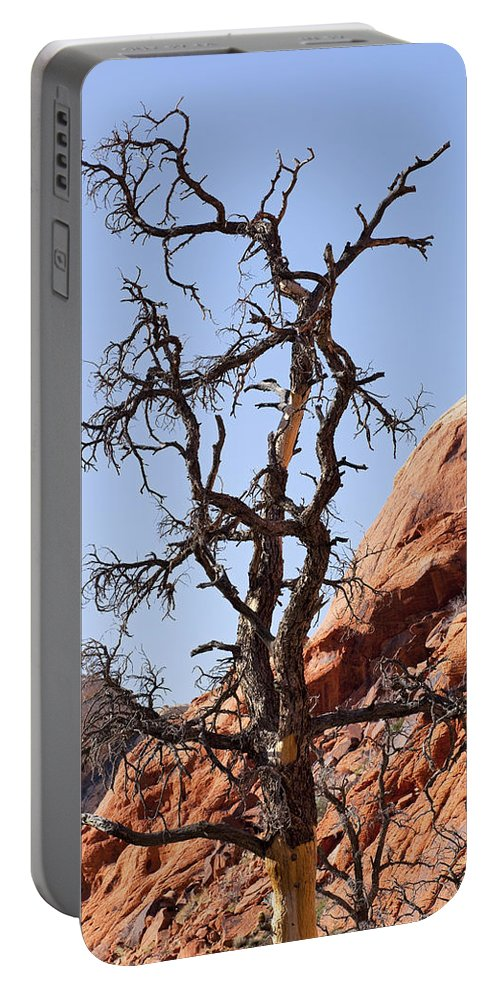 Tree Portable Battery Charger featuring the photograph Black Wood by Kelley King