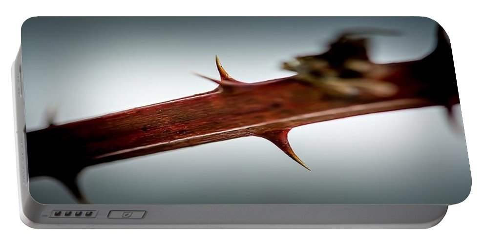 Blackberry Portable Battery Charger featuring the photograph Blackberry Thorns by Sherman Perry