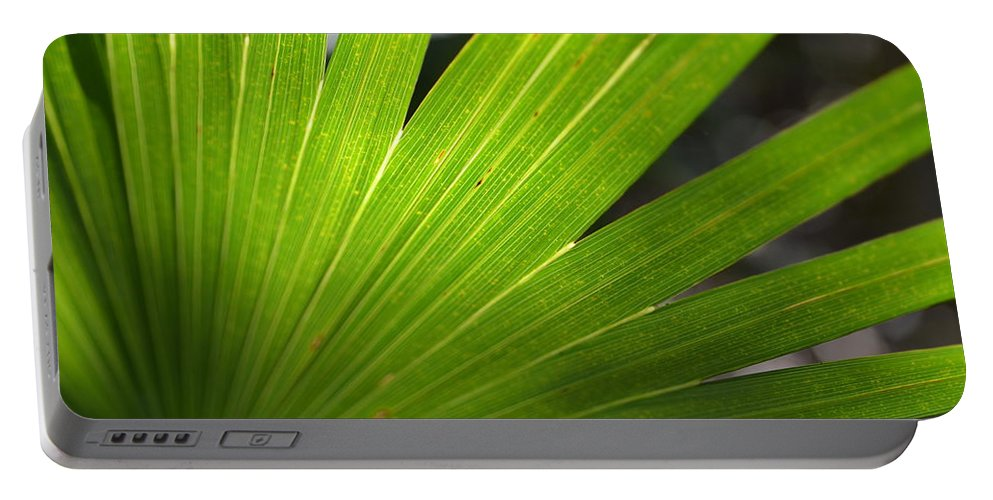 Palm Portable Battery Charger featuring the photograph Blades Of Green by Tammy Mutka