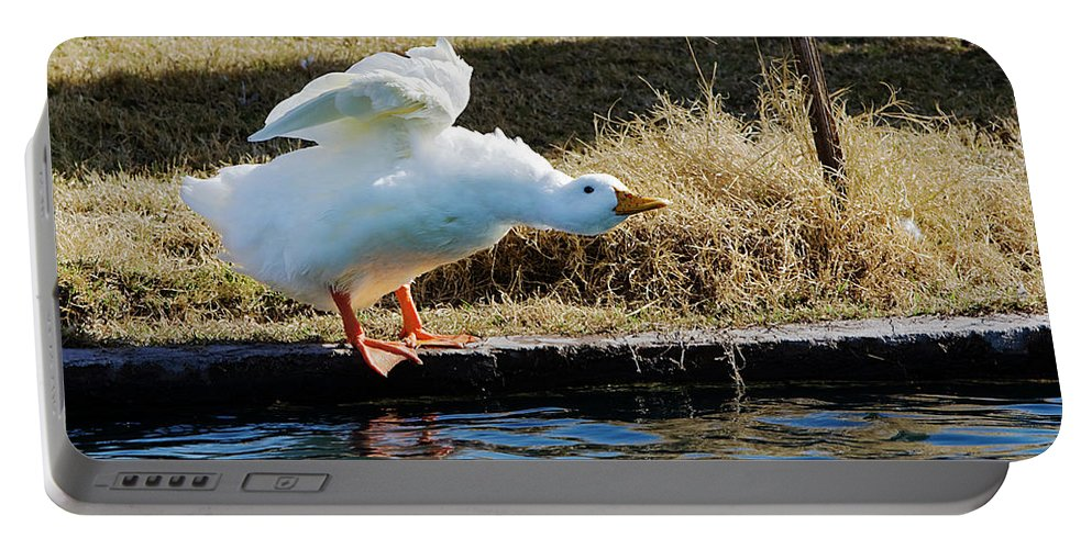 Goose Portable Battery Charger featuring the photograph Blast Off by Phyllis Denton