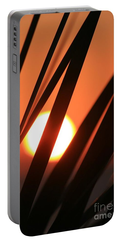 Sun Portable Battery Charger featuring the photograph Blazing Sunset And Grasses by Nadine Rippelmeyer