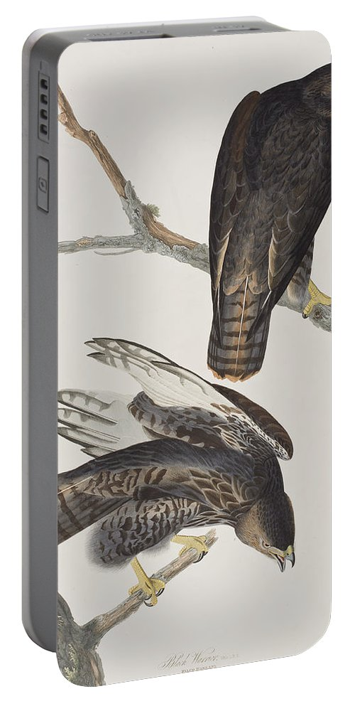 Harlan's Hawk Portable Battery Charger featuring the painting Blck Warrior by John James Audubon