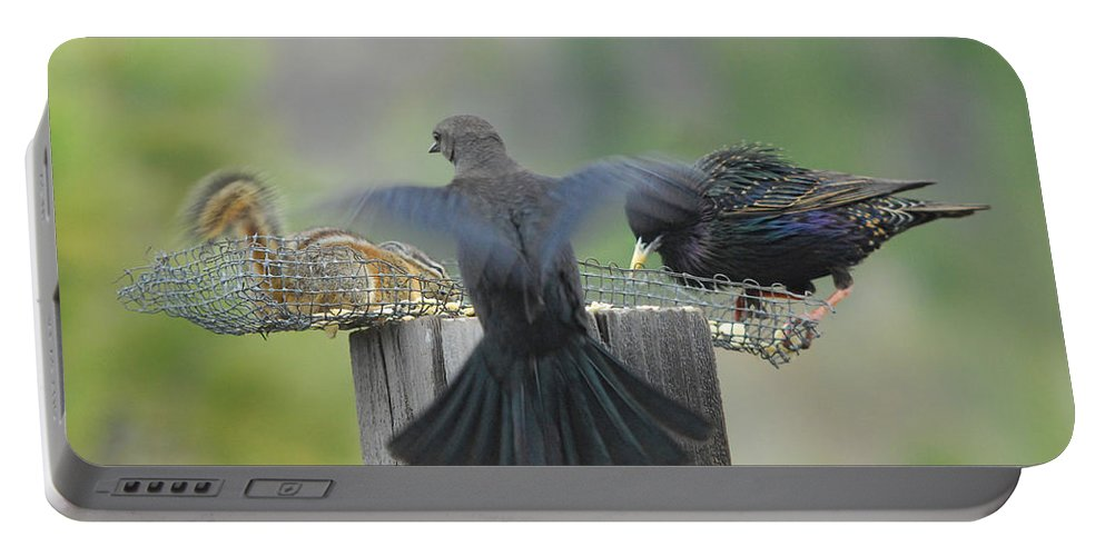 Bird Portable Battery Charger featuring the photograph Bless This Meal by Donna Blackhall