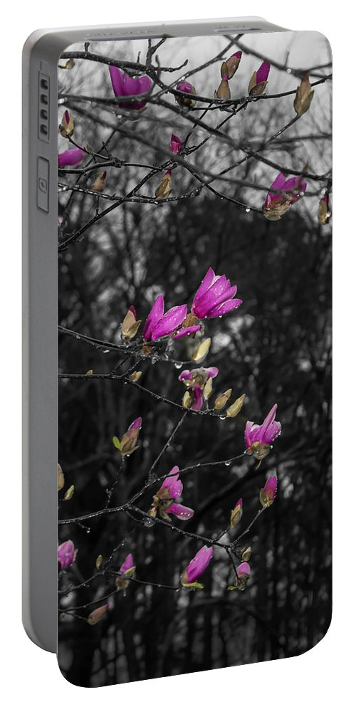 Flowers Portable Battery Charger featuring the photograph Blooming In The Rain by Steve Purifoy