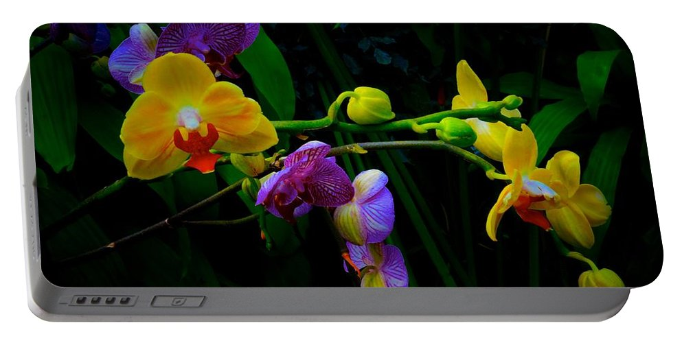 Chicago Botanic Garden Portable Battery Charger featuring the photograph Blooms To Come by Tim G Ross