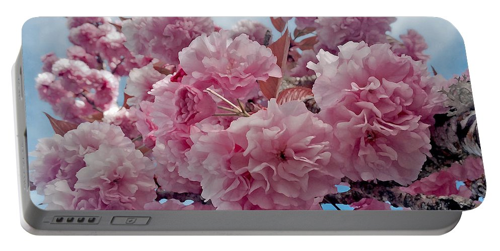 Blossom Portable Battery Charger featuring the photograph Blossom Bliss by Gwyn Newcombe