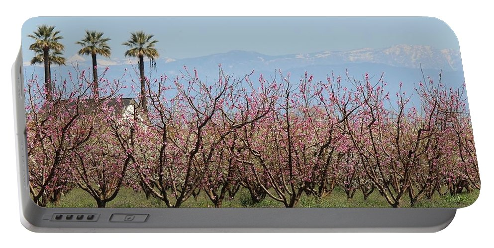 Blossom Trail Portable Battery Charger featuring the photograph Blossom Trail 1 by Marta Robin Gaughen