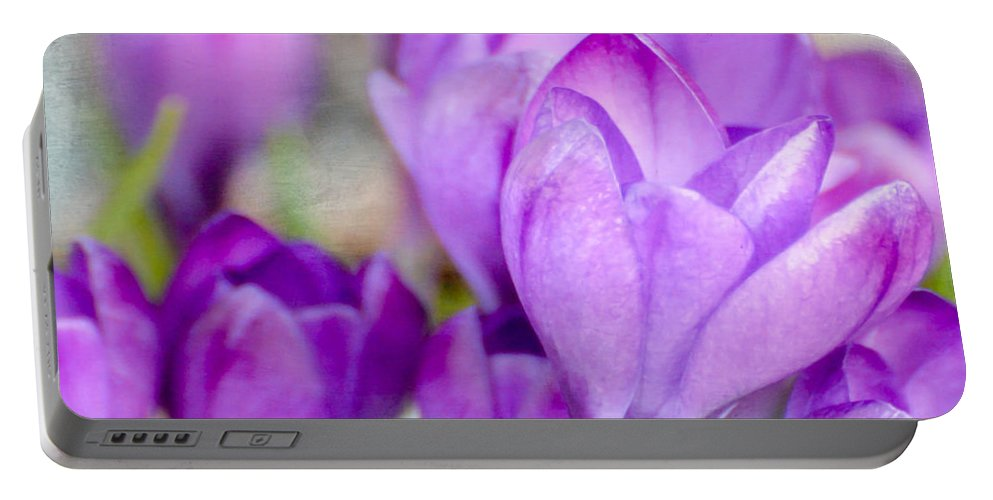 Crocus Portable Battery Charger featuring the photograph Blossoming Souls by Kerri Farley
