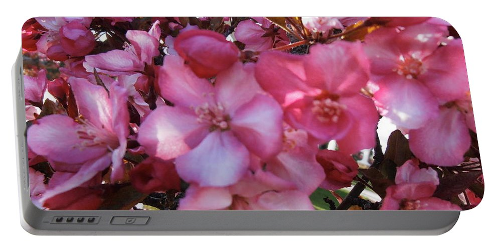 Blossoms Portable Battery Charger featuring the photograph Blossoming by Summer Ballantyne