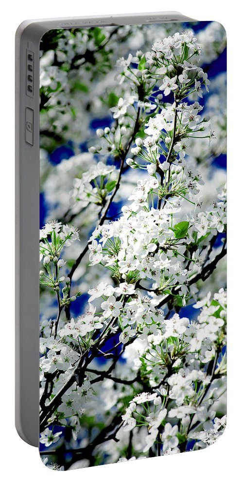 Flowers Portable Battery Charger featuring the photograph Blossoms by Greg Fortier