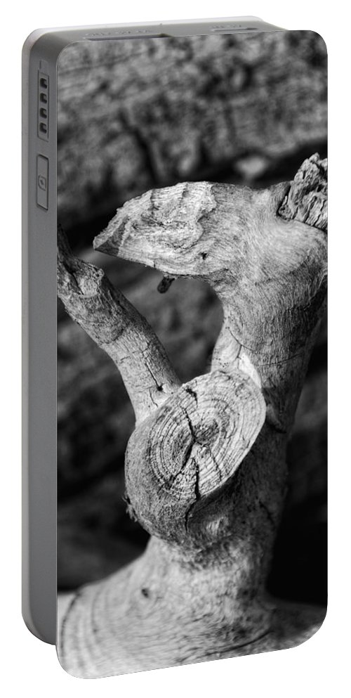 Photograph Portable Battery Charger featuring the photograph Blow A Kiss by Donna Blackhall