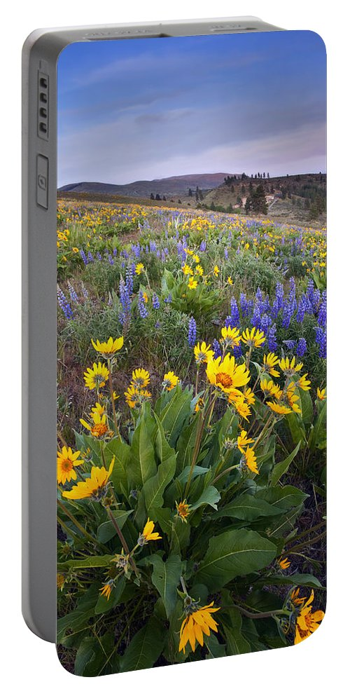 Lupine Portable Battery Charger featuring the photograph Blue And Gold by Mike Dawson