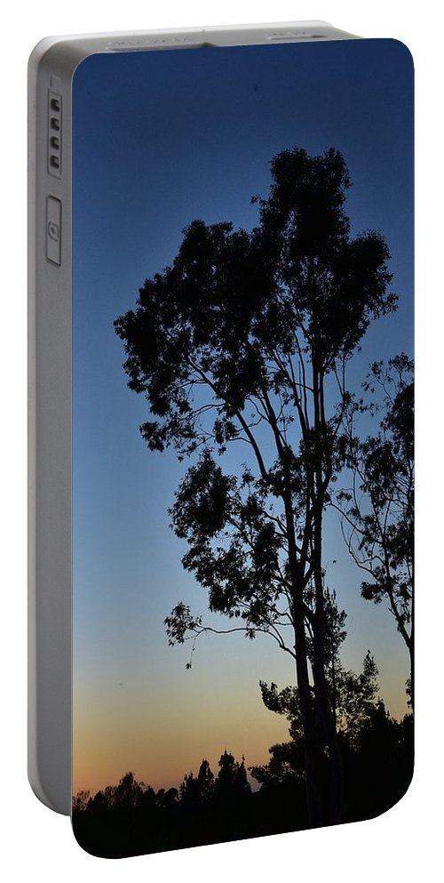 Linda Brody Portable Battery Charger featuring the photograph Blue And Gold Sunset Tree Silhouette I by Linda Brody