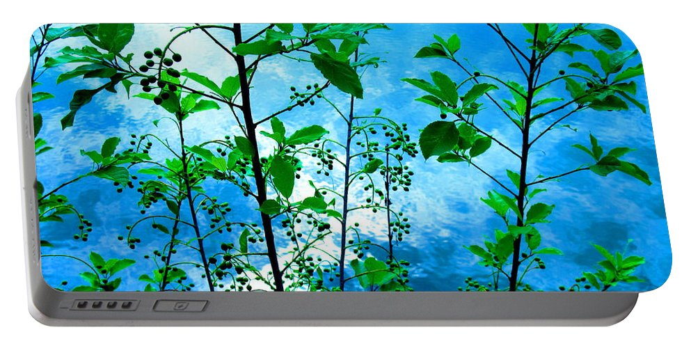 Water Portable Battery Charger featuring the photograph Nature's Gifts Of Blue And Green by Sybil Staples