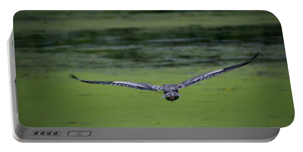 Blue Heron Portable Battery Charger featuring the photograph Blue Angel by Ray Congrove