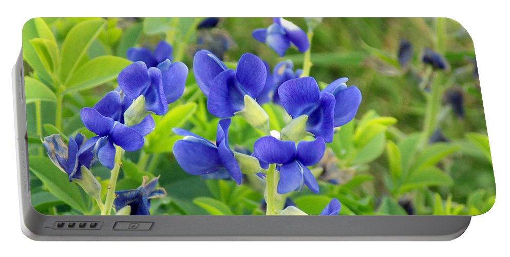 Baptisia Australis Portable Battery Charger featuring the photograph Blue Beauties by William Tasker