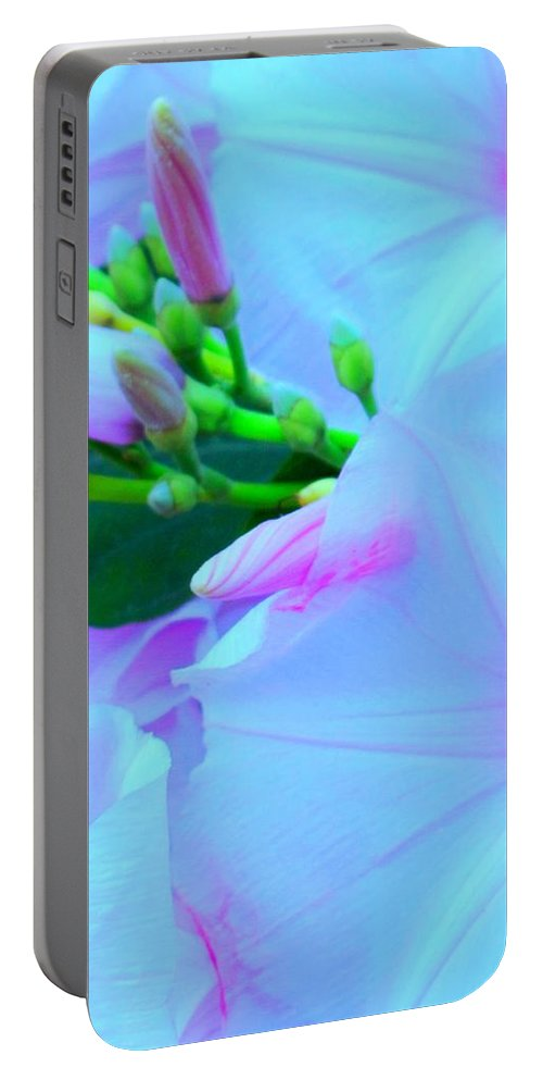 Blue Portable Battery Charger featuring the photograph Blue Beauty by Ian MacDonald