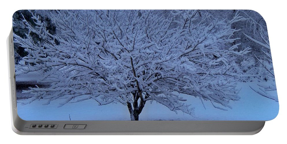 Color Portable Battery Charger featuring the photograph Blue Christmas by Betty Northcutt