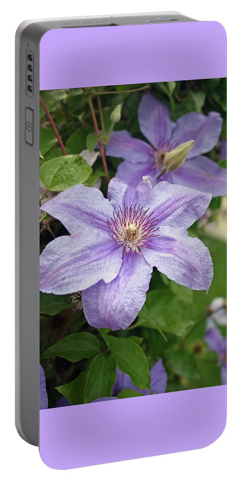 Clematis Portable Battery Charger featuring the photograph Blue Clematis by Margie Wildblood