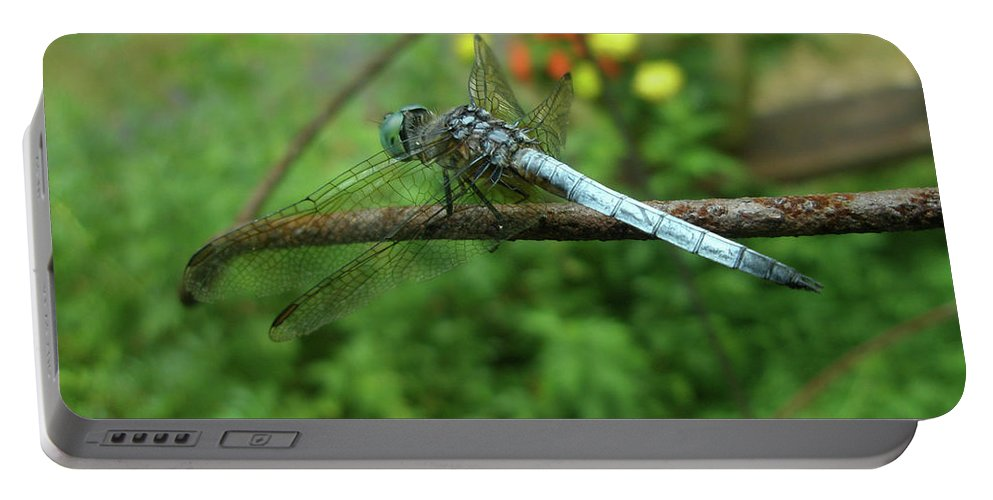 Dragonfly Portable Battery Charger featuring the photograph Blue Dragonfly by Mother Nature