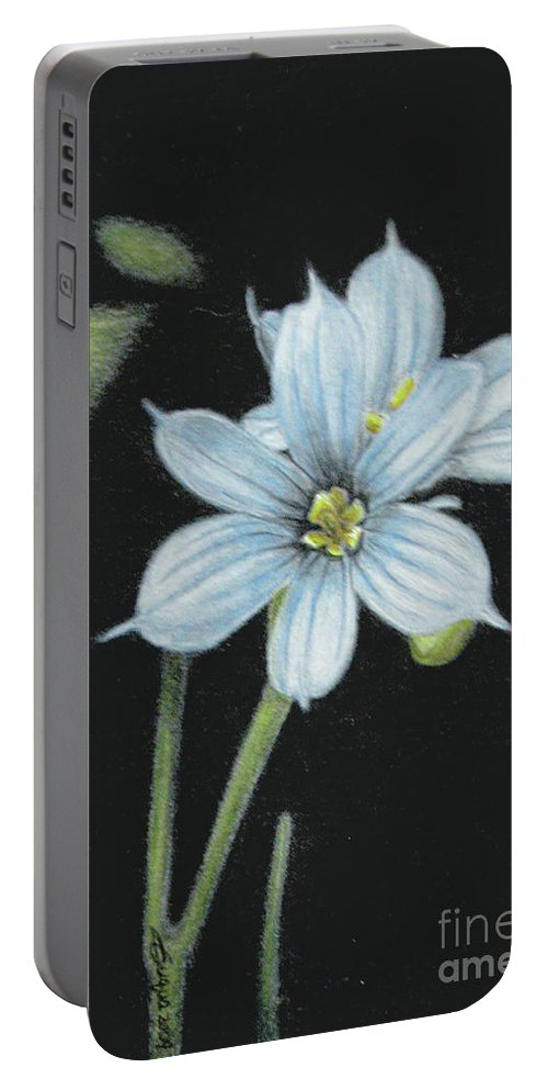 Fuqua - Artwork Portable Battery Charger featuring the drawing Blue Eyed Grass - 2 by Beverly Fuqua