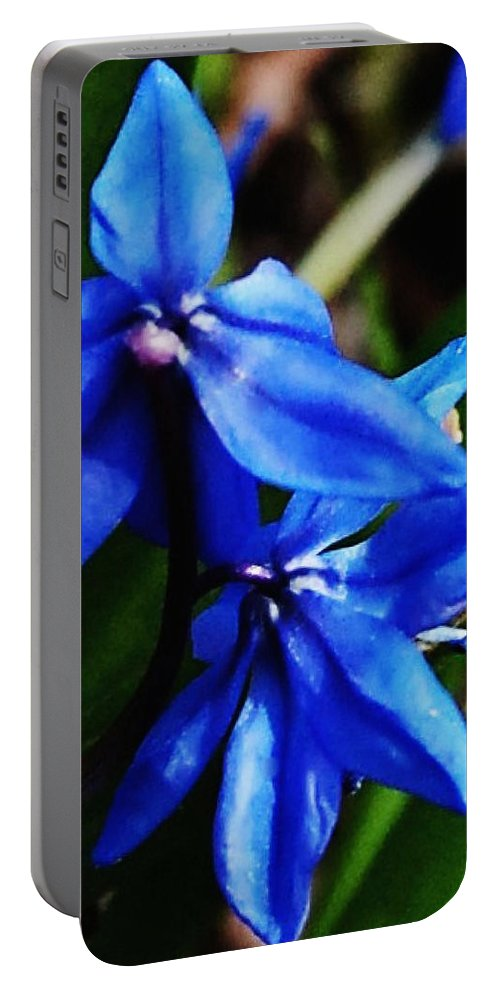 Digital Photo Portable Battery Charger featuring the photograph Blue Floral by David Lane