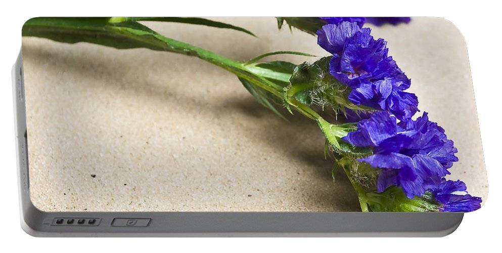 Blue Portable Battery Charger featuring the photograph Blue Flower by Svetlana Sewell