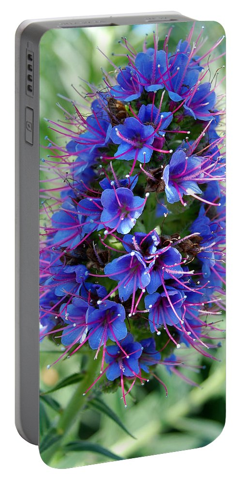 Flower Portable Battery Charger featuring the photograph Blue Flowers by Amy Fose