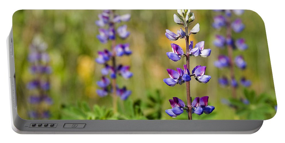 Flowers Portable Battery Charger featuring the photograph Blue Flowers by Kelley King