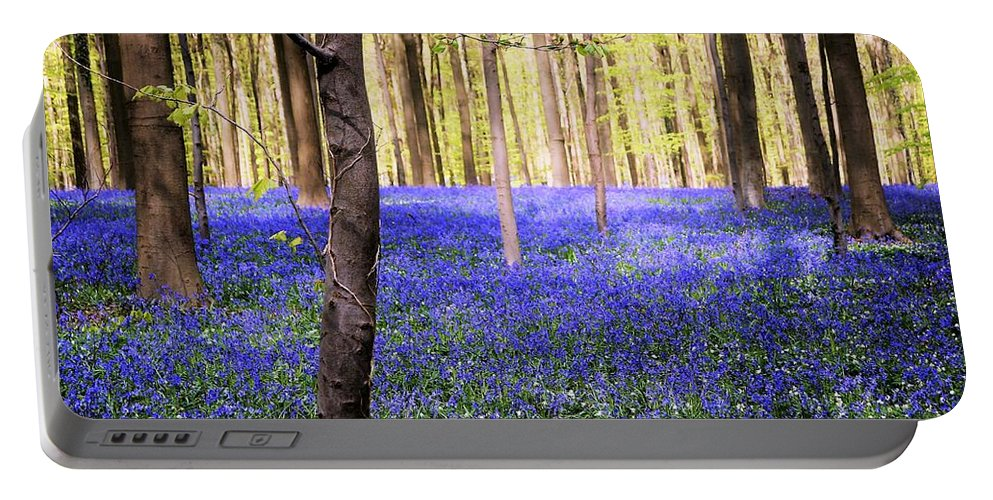 Blue Forest Portable Battery Charger featuring the photograph Blue Forest In Shadow by Andrea Rea