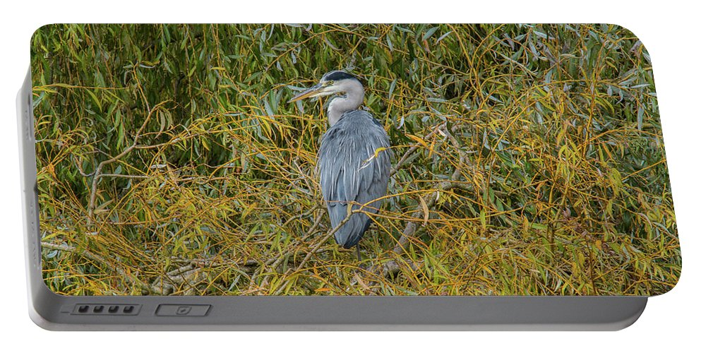 Blue Heron Portable Battery Charger featuring the photograph Blue Heron In The Autumn Colours by Stephen Jenkins