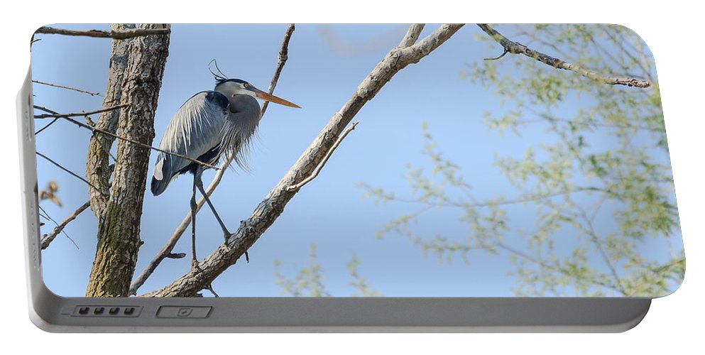 Blue Heron Portable Battery Charger featuring the photograph Blue Heron In Tree by Joni Eskridge